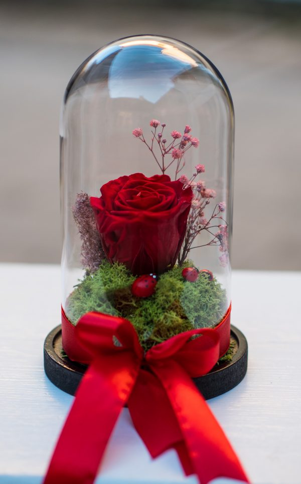 Cupola, trandafir criogenat , cadoul perfect, aranjamente florale, flori Sibiu